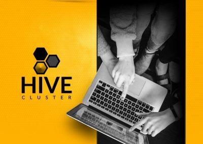 Agencja reklamowa Leszno > HiveCluster.pl